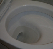 toilet1_after.jpg